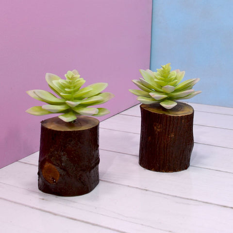 Artificial Succulents (set of 2) with wood log (Height 15 cm)