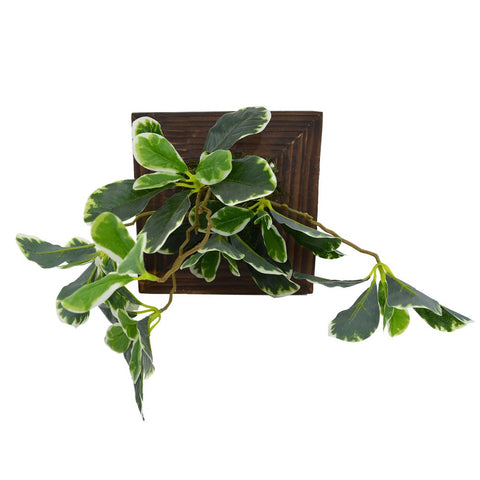 Artificial Green Wall Ficus plant Hanging Panel (20 cm X 20 cm )