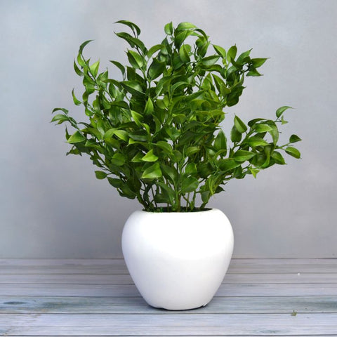 Artificial Latex Plant Big in Apple Pot (Height 32 cm)