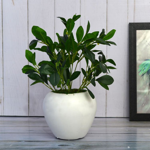 Artificial Rubber Plant Big in Apple Pot (Height 35 cm)