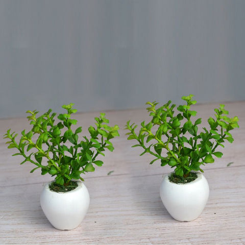 Artificial Jada Plant (Set of 2) in Small Apple Pot (Height 16 cm)