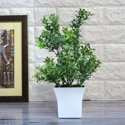 Artificial Fenugreek Plant in Ruby Pot ( Height 32 cm)