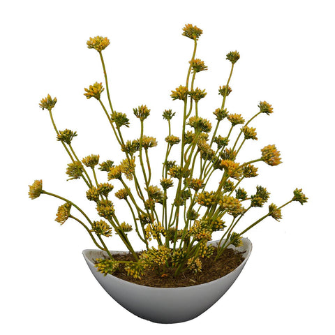 Artificial Flowers Garden Stonecrop Plant in Boat