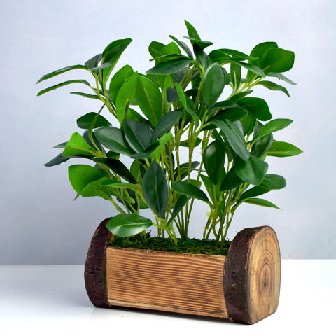 Artificial Plant in Buckle Wood Pot