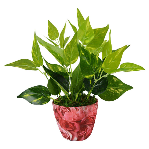 Artificial Money Plant in Texture Pot