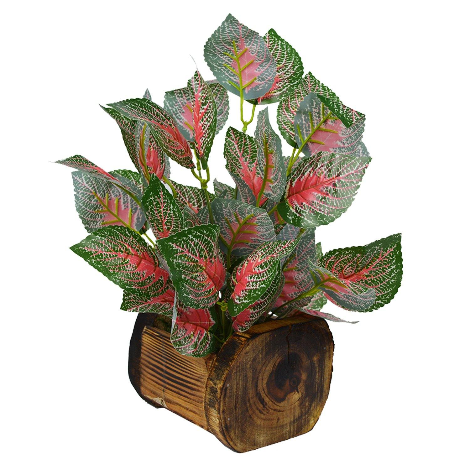 Artificial Clodium Plant in Wood Buckle Pot