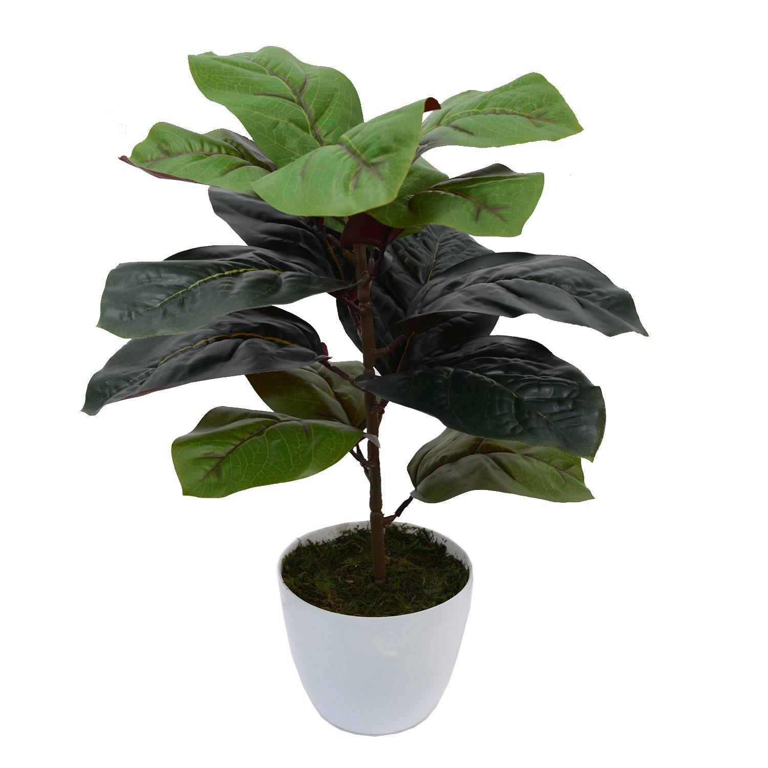 Real Touch Artificial Plant , 14 Leaves Heads with Pot - Fancy Mart