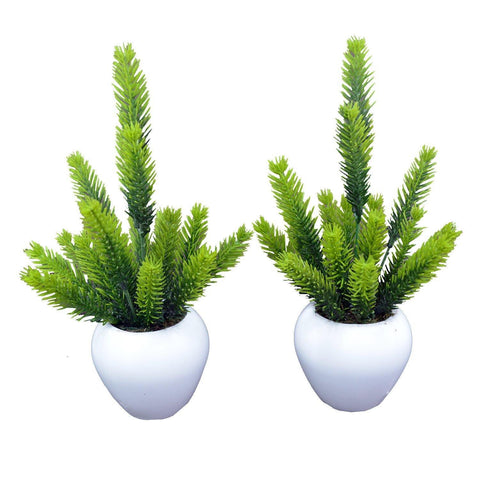 Artificial Pine Plant (Single piece)  With Small Apple Pot - Fancy Mart