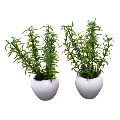 Artificial Aspiragus Plant (set of 2)  With Small Apple Pot