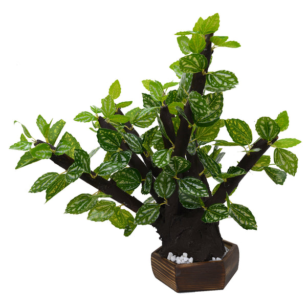 Artificial Bonsai Plant With wood Hexagon Pot