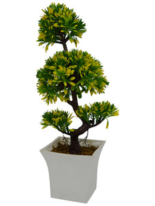 Artificial Plant Single Bonsai in White Long pot