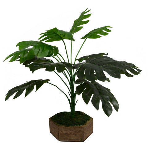 Artificial Plant Small Cut Leaves in Wood Hexa Pot