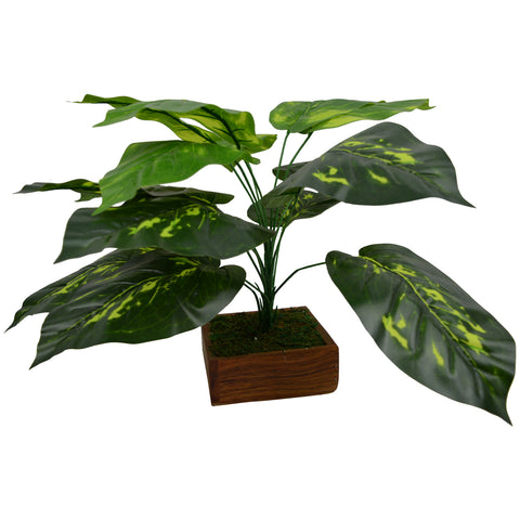 Artificial Plant Double Shade Leaves in Wood Square Pot