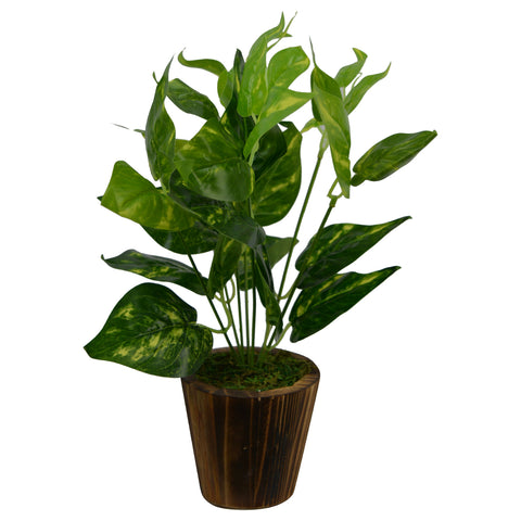 Artificial Money plant (30 cm/ 12 inchs) in Wood round samll pot