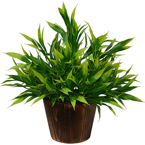 Artificial Plant Bamboo (28 cm/ 11 inchs) in Wood round big pot
