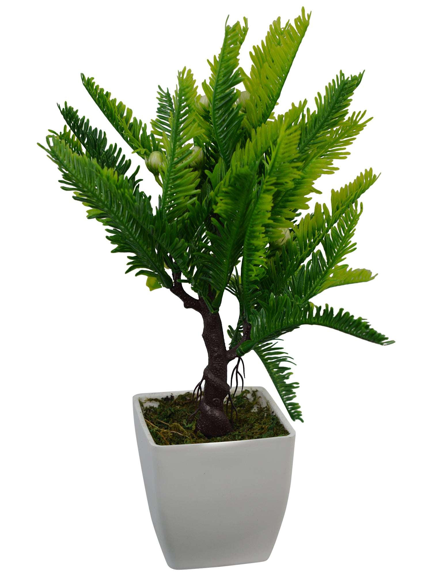 Artificial Plant small Coconot (30 cm/ 12 inchs) in Square white Pearl pot