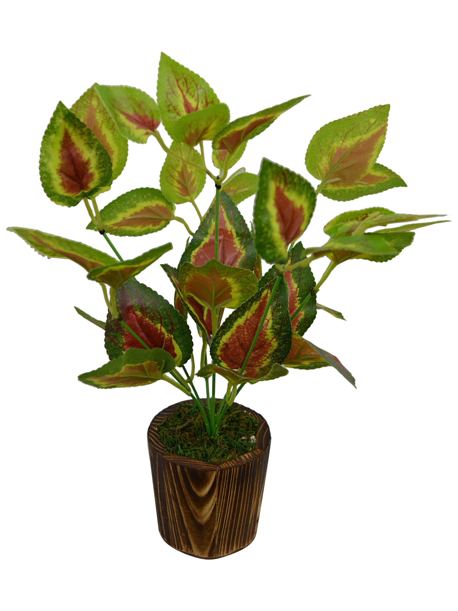 Artificial Green Plant bunch (28 cm/ 11 inchs) in Wood round small pot