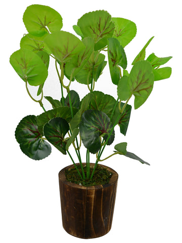 Artificial Green Plant bunch (30 cm/ 12 inchs) in Wood round small pot
