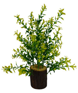 Artificial Green Plant in Natural Wood (Height : 30 cm)