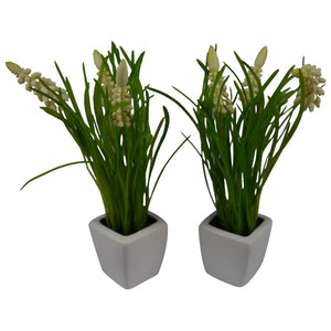 Artifical Plants (Set of 2) with Pots