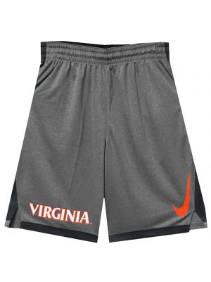Nike Gray Dribble Drive Short