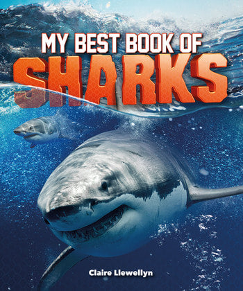 MY BEST BOOK OF SHARKS