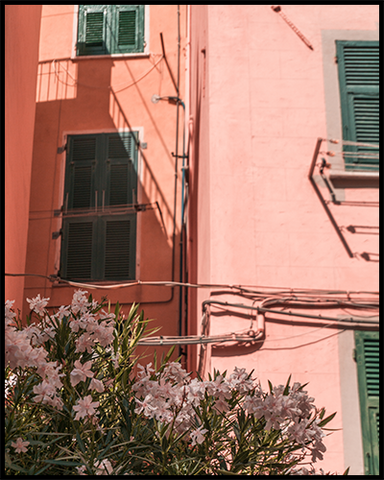 Riomaggiore poster featuring a pink house with green shutters and light-pink bougainvillea. Create an inspiring photo wall with our Cinque Terre Collection.