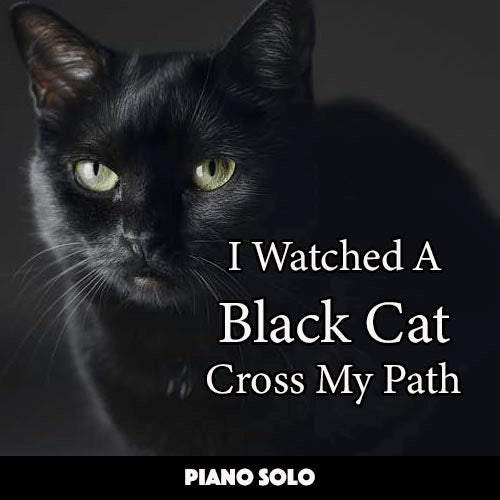 easy Piano Solo about Cats
