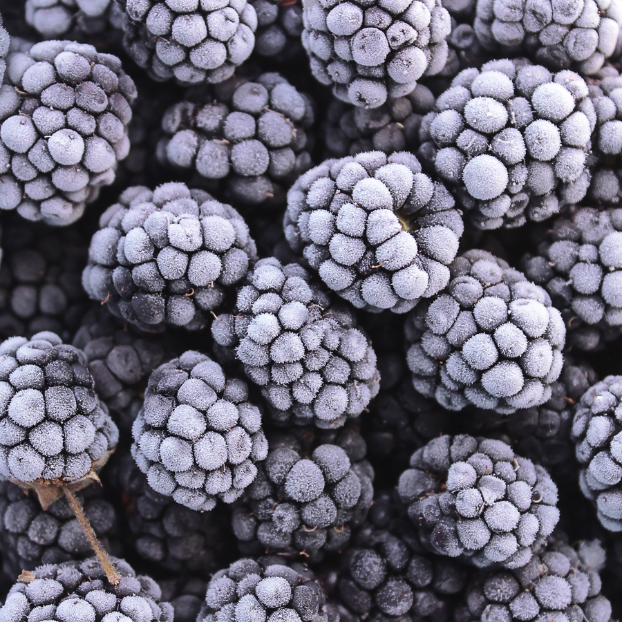 Frozen Blackberries (2.2Lb)