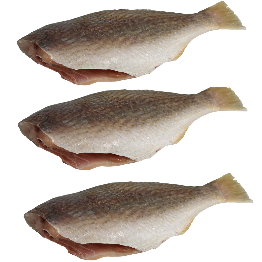 Pan Ready Croaker Fish (with no head), Pack of 3