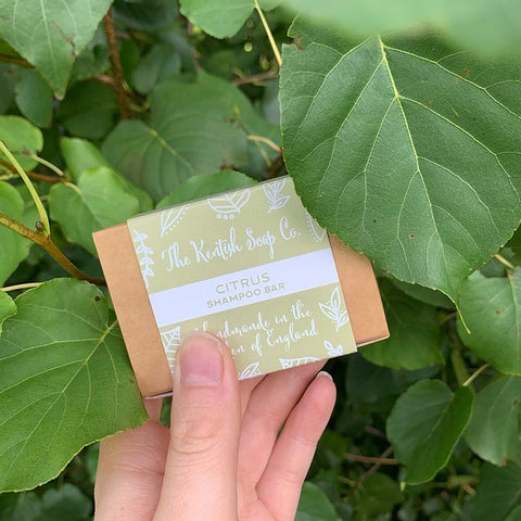Citrus Shampoo Bar