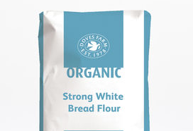 Bread Flour Strong Doves Farm Organic