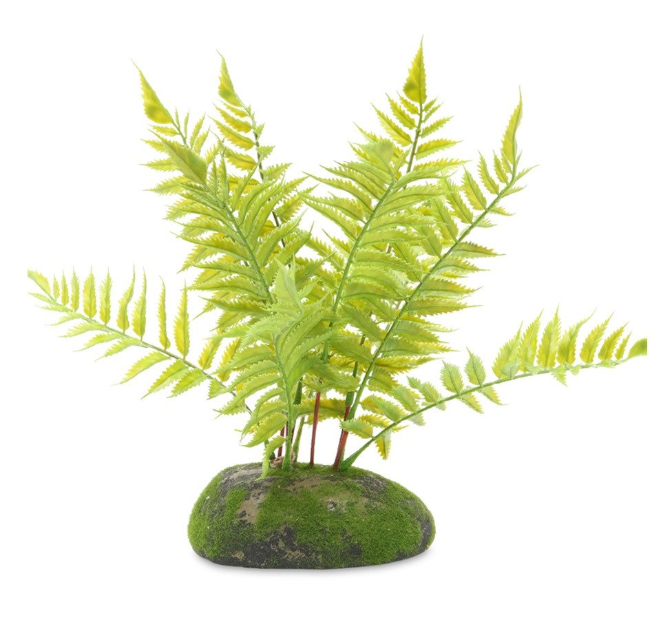 pro rep ProRep Artificial Tropical Fern Plant - Reptiles UK