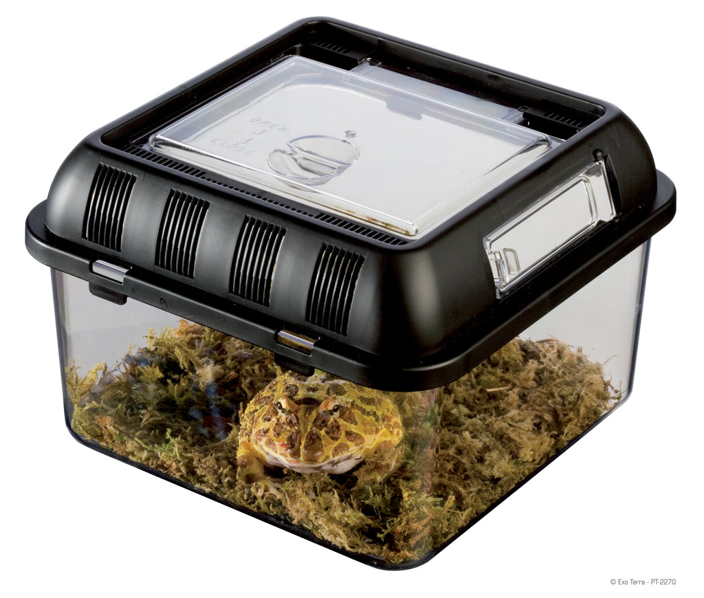 Reptiles UK Breeding Box Small - Reptiles UK