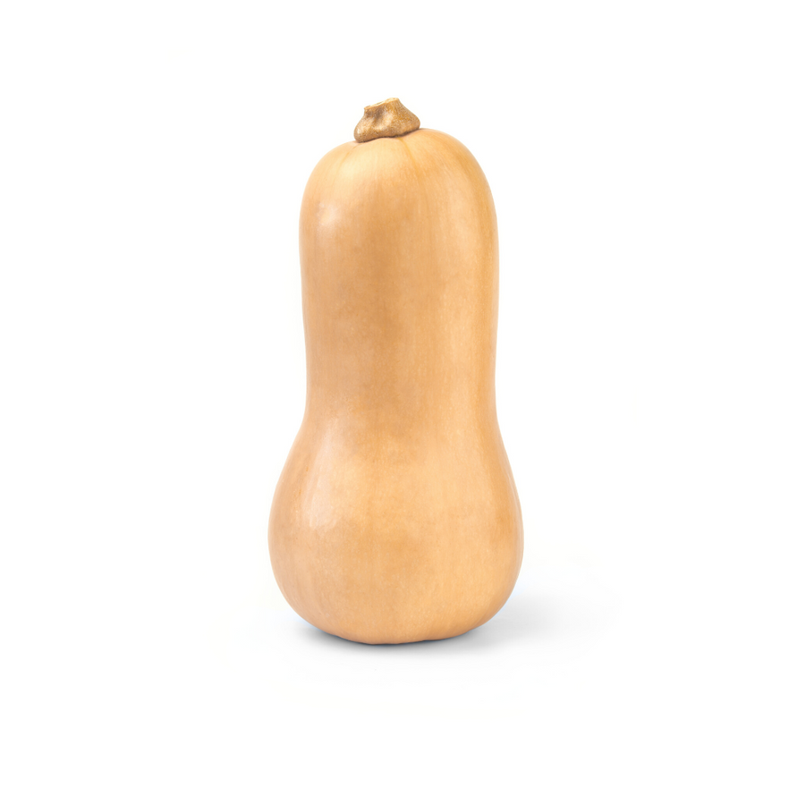 B.C. Butternut Squash (1 Each)