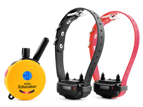 ET 302 MINI REMOTE 2-DOG TRAINER - Zen Dog RI