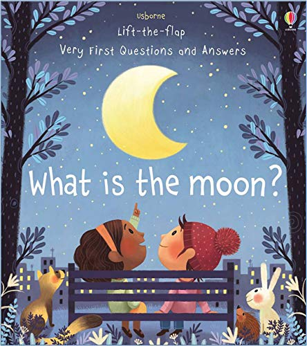 What is the Moon? Book