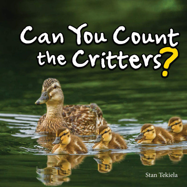 Can You Count the Critters? Book