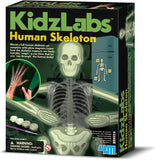 KidzLabs Glow Human Skeleton Science Kit
