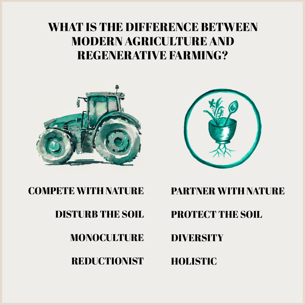 Regenerative farming by roots rice and beans