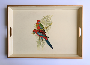 Large Rectangular Tray:  Pair of Parrots