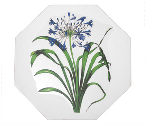 Octagonal Tablemats Set of 4 (boxed): Agapanthus