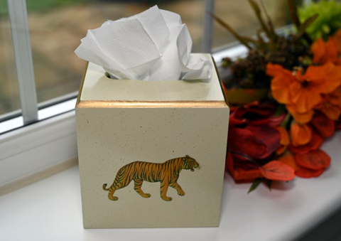 Square Tissue Box Cover: Tiger
