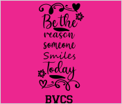 BVCS Be the Reason
