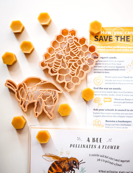 Teddy Bear Bee & Honey Comb Eco Cutter (2 Pieces)