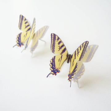 Swallowtail Butterfly Stud Earrings