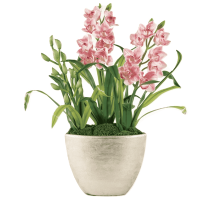 Pink Orchid Statement Garden - Sarah Virginia Home