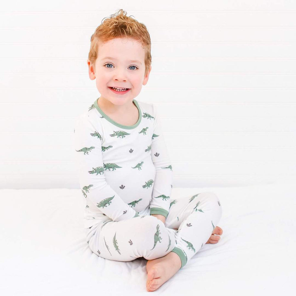 Printed Toddler Pajama Set, Dino
