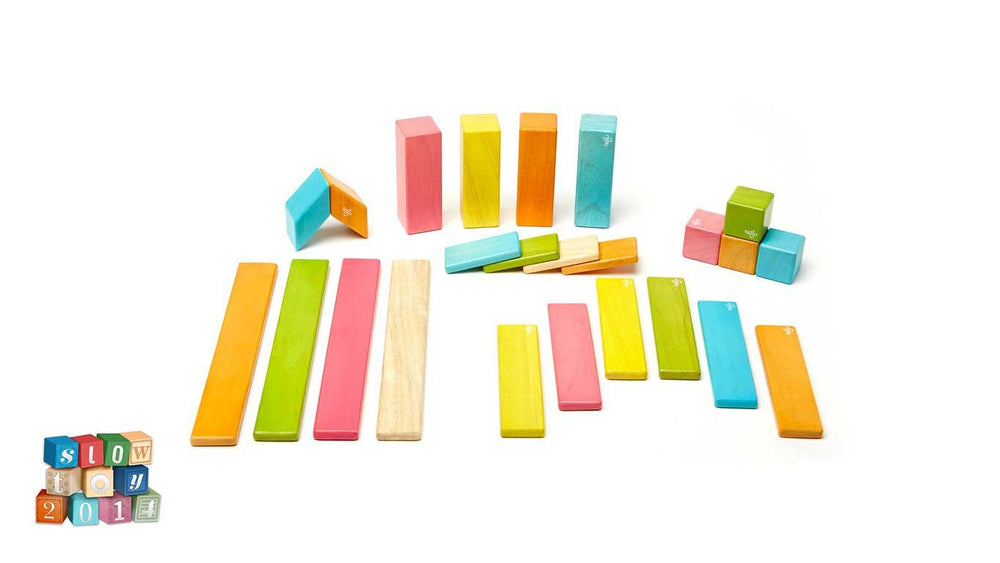 24 Piece Magnetic Wooden Block Set - Tints