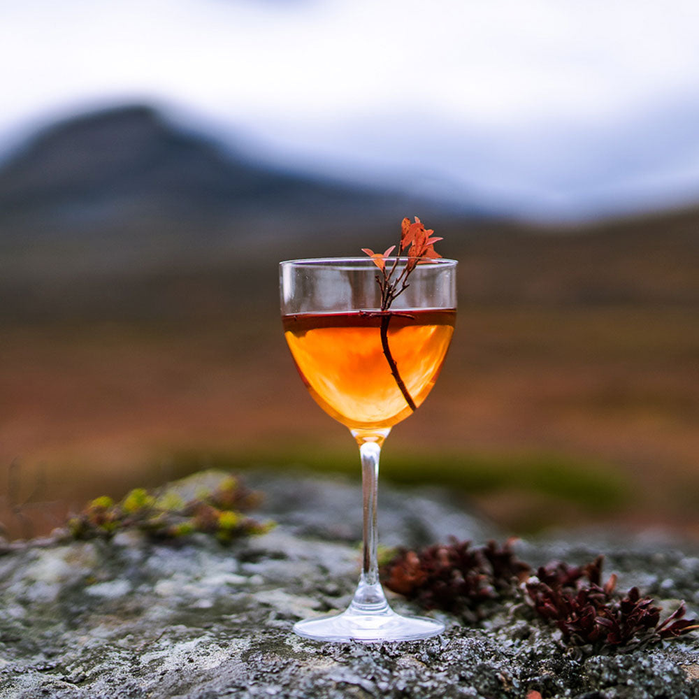 Nordic Negroni Cloudberry